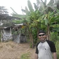 YB1UUU's picture